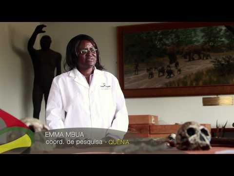 Nova África - Berço da Humanidade