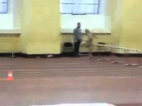 devushka-ne-dobezhala-do-tualeta-video
