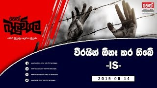 Neth Fm Balumgala  2019-05-14