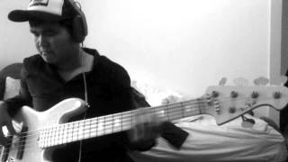 Steely Dan - Peg (Alive In America) Bass Cover