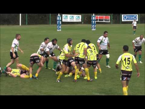 Montauban / Usap 84 Rugby