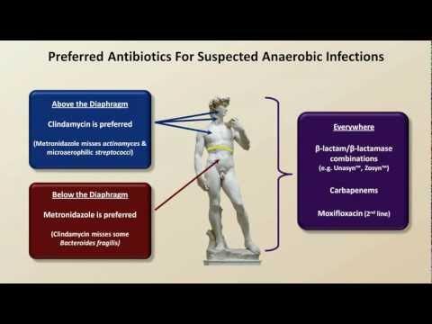 Antibiotics for Anaerobic Infections (Antibiotics - Lecture 6)