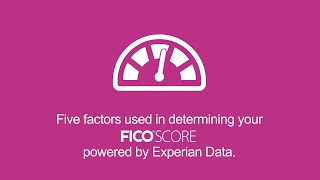 What Five Factors Determine My FICO® Score? | Experian Credit 101 Express