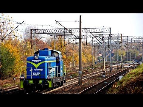 Lokomotywy PKP Cargo W Zielonej Górze