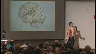 40/40 Vision Lecture: Neurology and the Passion for Art