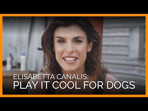 Elisabetta Canalis Plays It Cool for Dogs