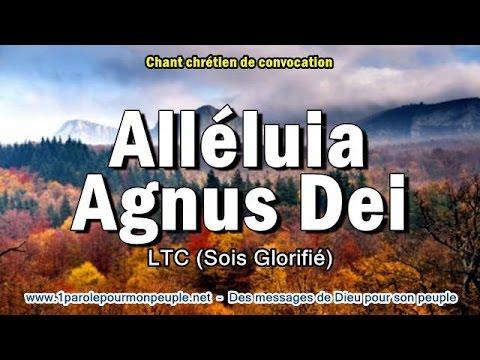 ALLELUIA AGNUS DEI - LTC – Chant chrétien