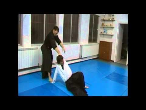 Ogawa Ryu Aikijujutsu - November  Training in Zamora Image 1