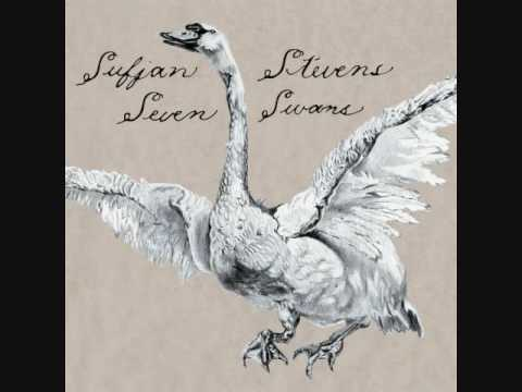 Sufjan Stevens - Dress Looks Nice On You