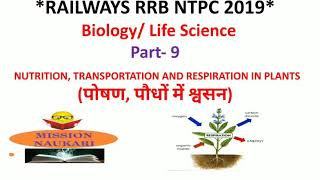Biology | Transportation and Respiration in Plants | General Science and Life Science for RRB NTPC