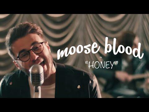 Moose Blood Honey rock music videos 2016