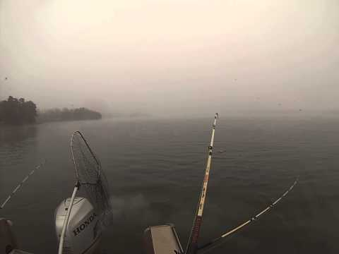 Lake Norman, Striper Fishing. January 12, Part B