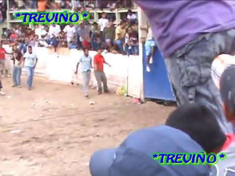 Pendon de la Feria de la Candelaria en Zumpango Gro. 2010