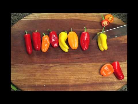 "Stop Motion - ""The Lone Pepper"""