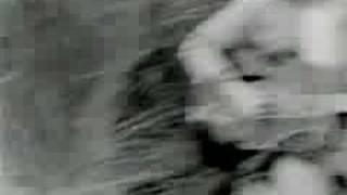 Watch That Petrol Emotion Cellophane video