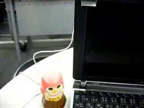 USB gyógyító bagoly