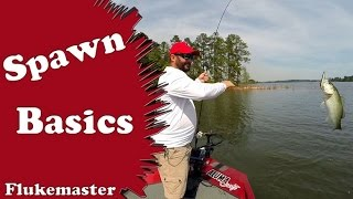 Bass Fishing Basics - The Spawn