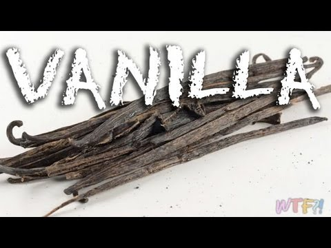 What Is Vanilla? / Homemade Vanilla Extract