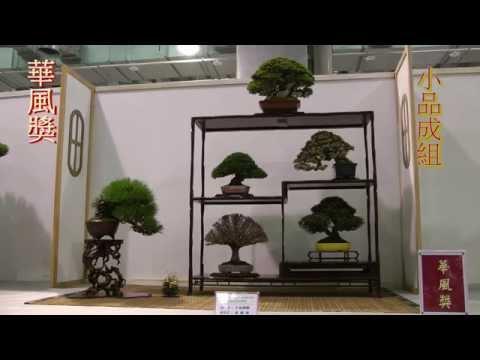2014 Taiwan Bonsai Exhibition(1),第19回臺灣全國盆栽展,華風獎 逸品獎,Full HD 1080p