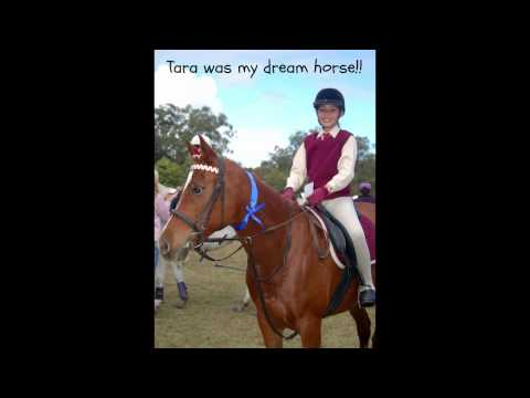 Diary Of A Horse Mad Girl video