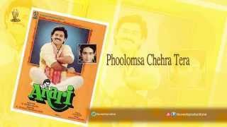 Phoolomsa Chehra Tera |JukeBox |Anari |Venkatesh,Karisma Kappor