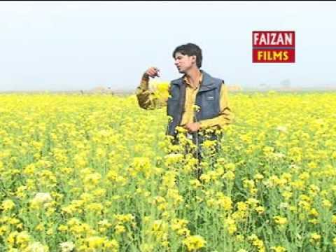 Hd 2014 New Maithali Hot Song   Chhauri Bangal Ke   Bhartiya Mahesh Tiwari video