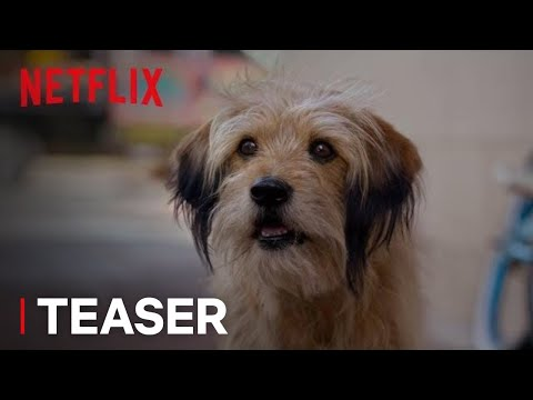 BENJI | Official Teaser [HD] | A Netflix Film