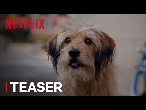 BENJI   Official Teaser [HD]   A Netflix Film