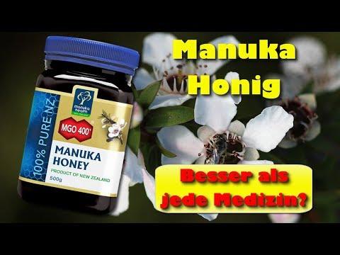 Manuka Honig – besser als jede Medizin? Wie Manuka Honig eine gute Gesundheit fördert