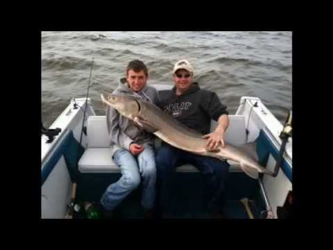 Rainy River Sturgeon Fishing 2013