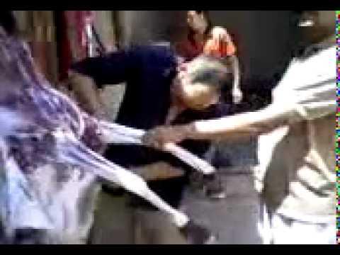 khbari.com صينيون ياكلون حمارا في الجزائر