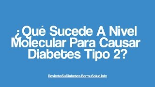 Q Sucede A Nivel Celular Para Causar Diabetes T 2? |What Happens To A Cell Level Cause T 2 Diabetes?