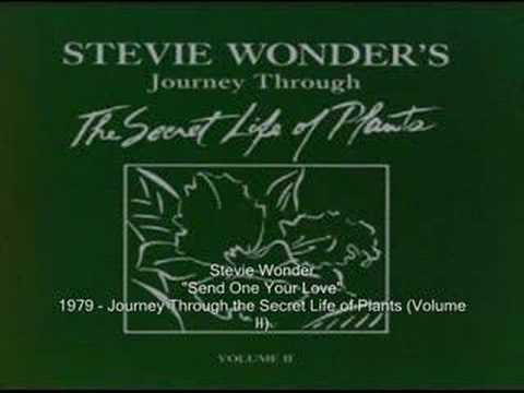 Stevie Wonder - Outside My Window