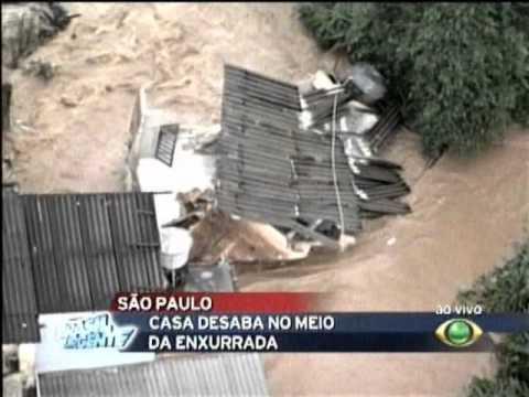 Gato tenta se salvar na enchente de 14/01 em São Paulo