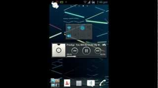 Real ics r4.1 In Sony Live  With walkman [wt19i]