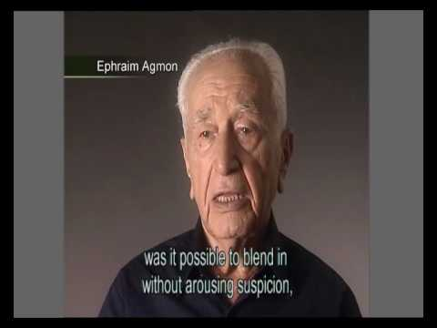 Holocaust Survivor Testimonies: The Underground in France and Hungary