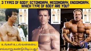3 Types of body: Ectomorph, Mesomorph, Endomorph|| Which type of body are you? ||Chennai Fitness