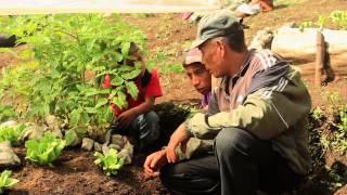 Resumen Revirtiendo la desnutrición infantil en Guatemala