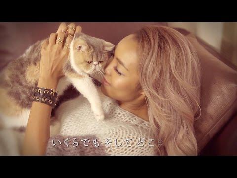 ドラマ「オトナ女子」挿入歌 - Crystal Kay「何度でも」(11/4配信スタート) - 【ドラマセットで撮影!話題の猫「ちくわ」も出演!】