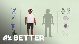 Your Brain On A Diet | Better | NBC News