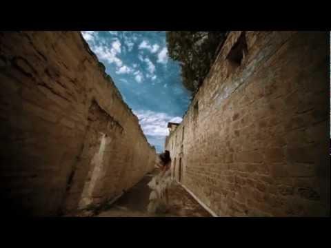 Преглед на клипа: Armin Van Buren - Going Wrong