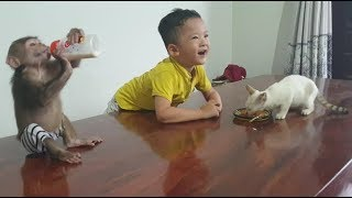 Baby Monkey | Doo And Cat Miu Play With Brother And Eat Their Food