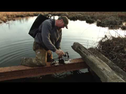 Trapping TV Episode 10- Trapping the Valuable Muskrat