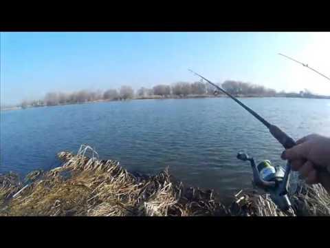 рыбалка 2017 в молдове