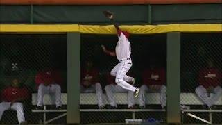 MLB Robbed Home Runs