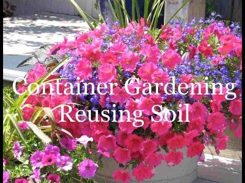 Container gardening reusing soil youtube - Best soil for container gardening ...