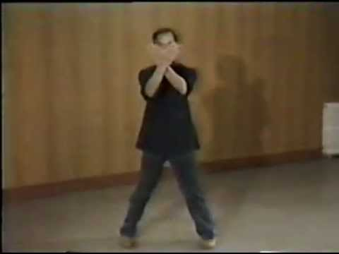 Wing Chun  - Ip Man training and forms part 2 Image 1