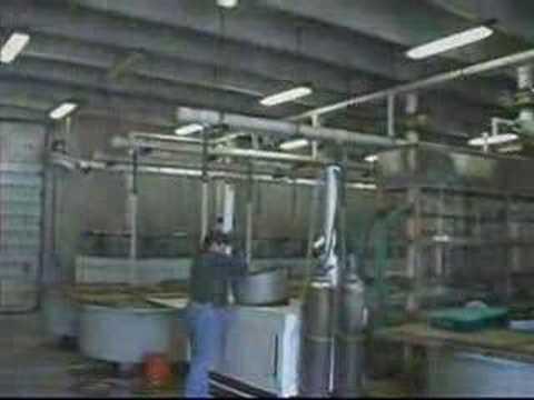 Mini-Video of the Byron State Fish Hatchery near Byron Oklahoma.