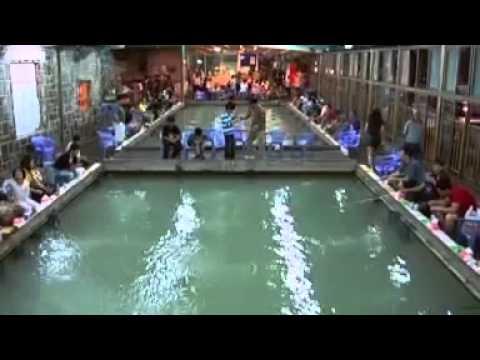 Urban Shrimp Fishing In Taiwan.