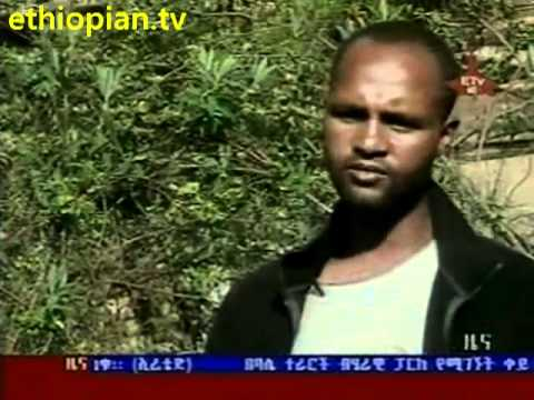 News in Amharic - Ethiopian News in Amharic - Tuesday, July 19, 2011